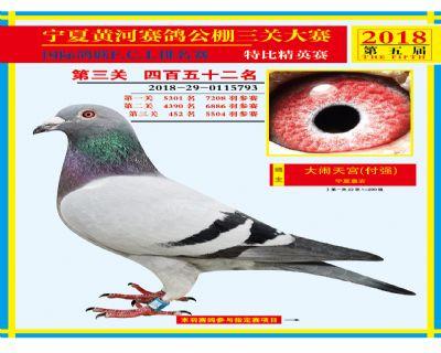 宁夏黄河决赛452名