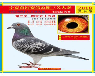 宁夏黄河决赛455名