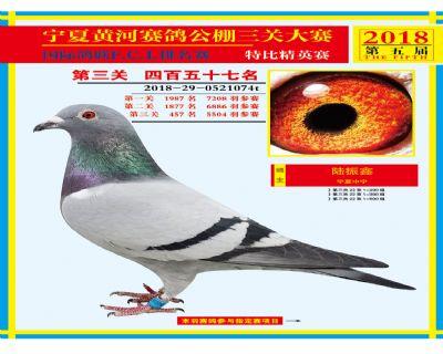 宁夏黄河决赛457名