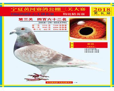 宁夏黄河决赛462名