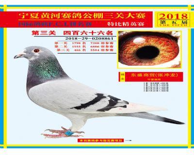 宁夏黄河决赛466名