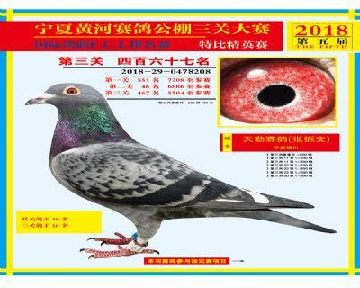宁夏黄河决赛467名