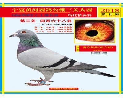宁夏黄河决赛468名
