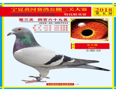 宁夏黄河决赛469名