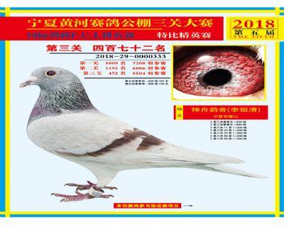 宁夏黄河决赛472名