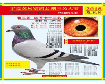 宁夏黄河决赛473名
