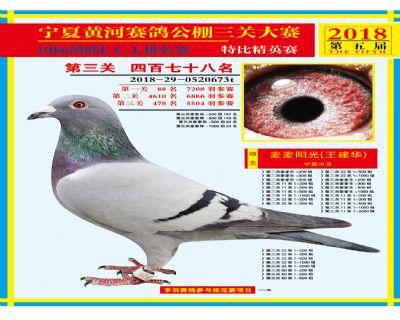 宁夏黄河决赛478名
