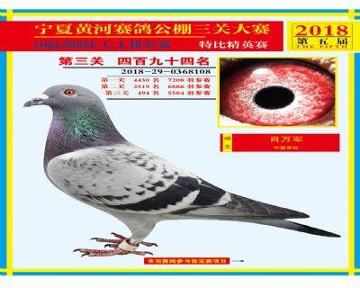宁夏黄河决赛494名