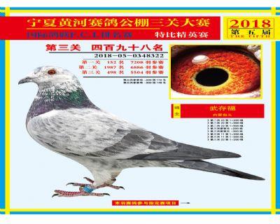宁夏黄河决赛498名