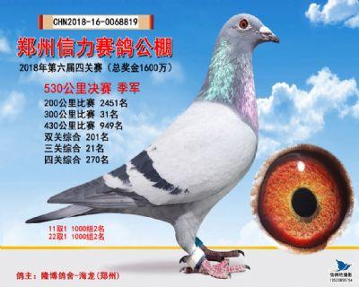 郑州信力决赛季军