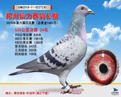 郑州信力决赛24名