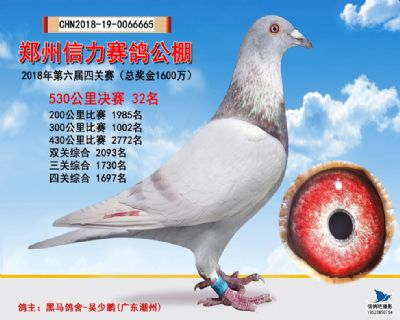 郑州信力决赛32名