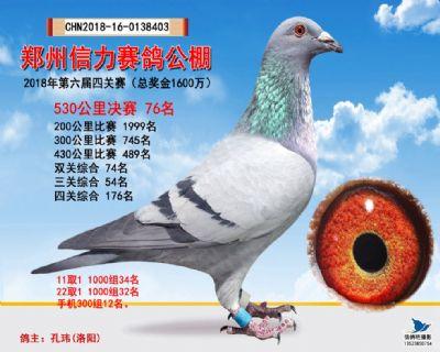 郑州信力决赛76名