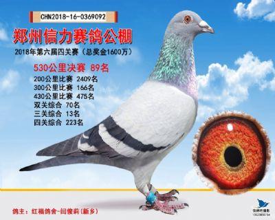 郑州信力决赛89名
