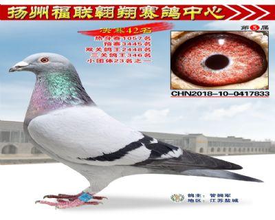 福联翱翔决赛42名