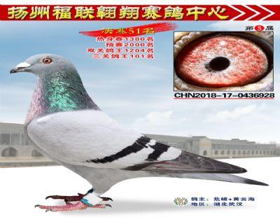 福联翱翔决赛51名
