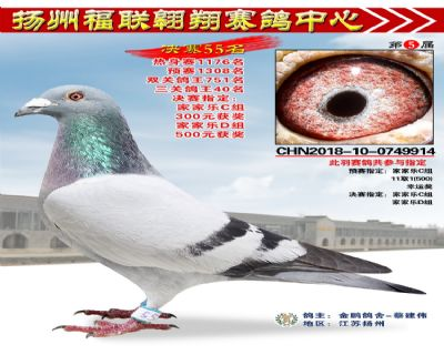 福联翱翔决赛55名