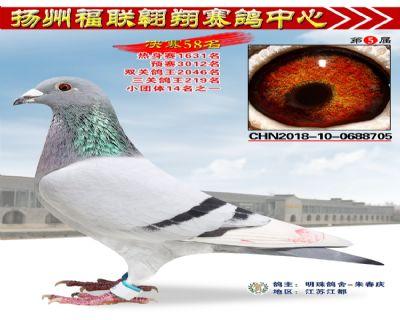 福联翱翔决赛58名