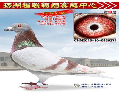 福联翱翔决赛82名