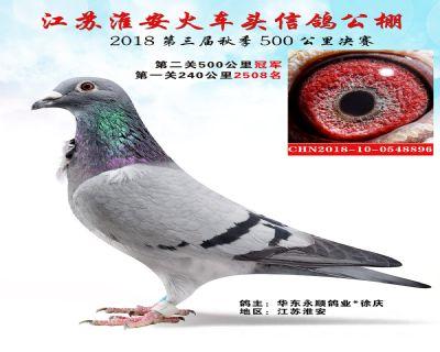 淮安火车头公棚决赛冠军