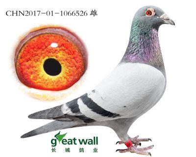 4.幻想福雷迪直子.1066526