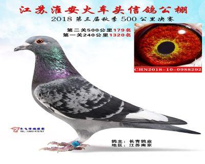 淮安火车头决赛179名