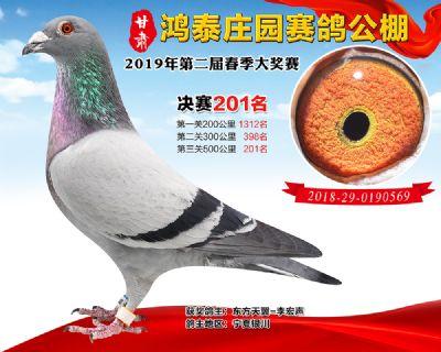 甘肃鸿泰庄园决赛201名