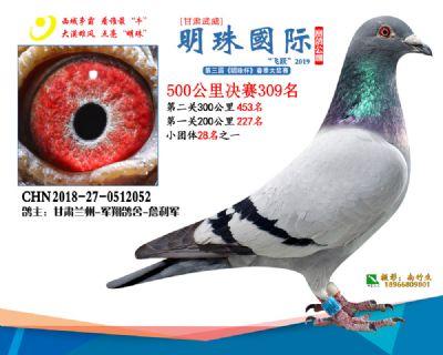 2019武威明珠309