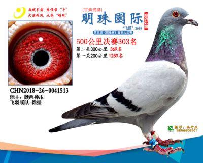 2019武威明珠303