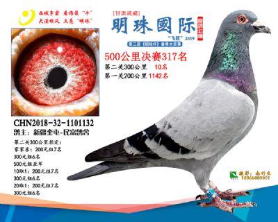 2019武威明珠317