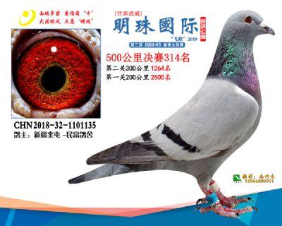 2019武威明珠314