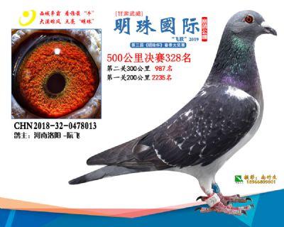 2019武威明珠328