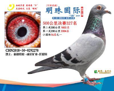 2019武威明珠327