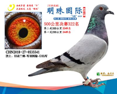 2019武威明珠322