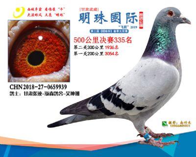 2019武威明珠335