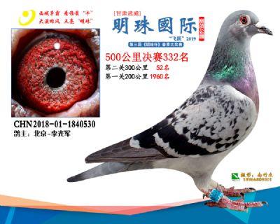 2019武威明珠332