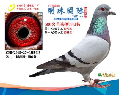 2019武威明珠350