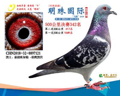 2019武威明珠342