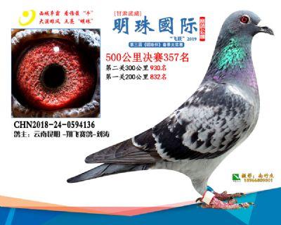 2019武威明珠357