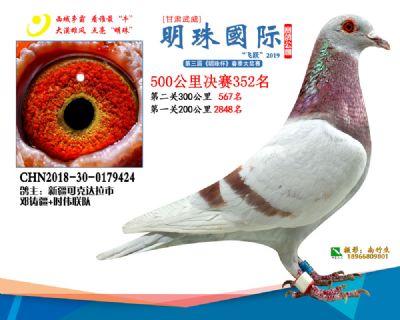 2019武威明珠352