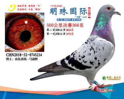 2019武威明珠366