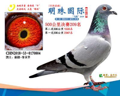 2019武威明珠209