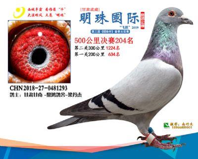 2019武威明珠204