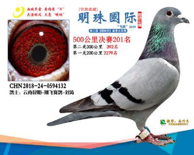 2019武威明珠201