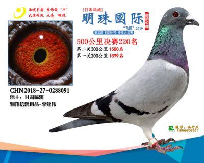 2019武威明珠220