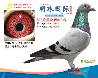 2019武威明珠219