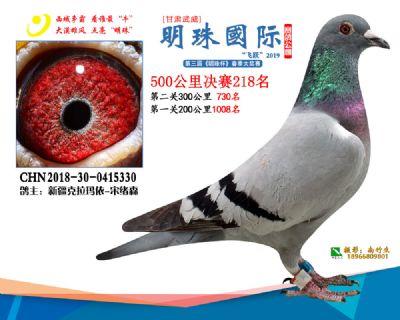 2019武威明珠218