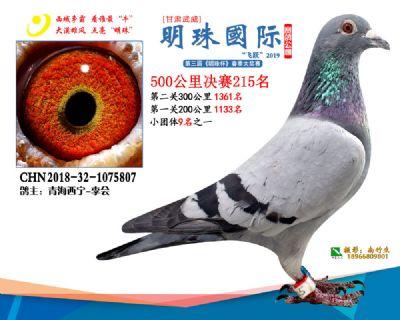 2019武威明珠215
