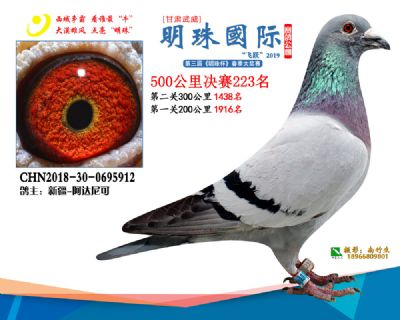 2019武威明珠223