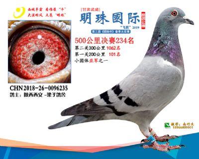 2019武威明珠234